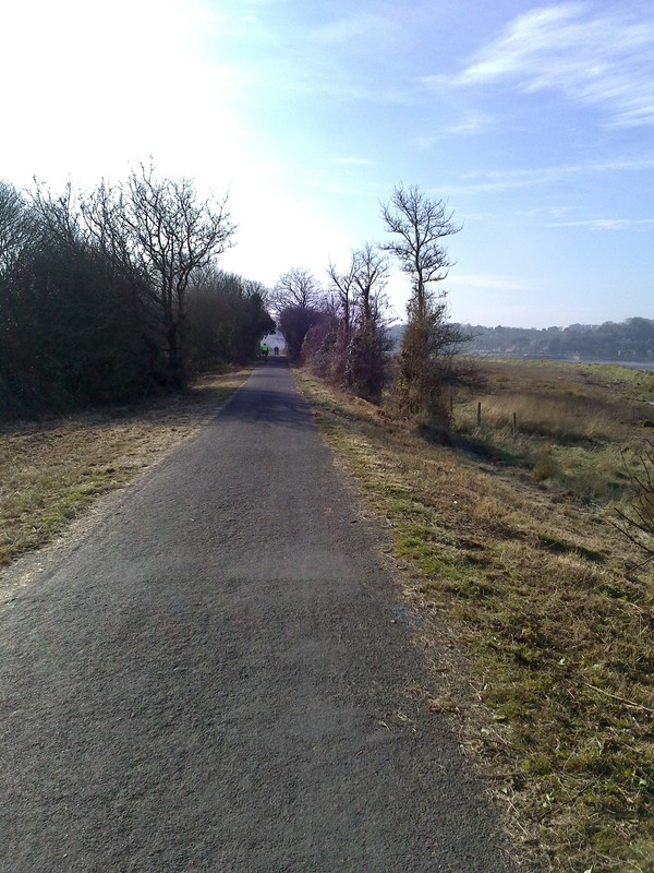 The Trail at Westleigh
